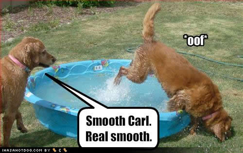 funny cats,funny animals,funny dogs,funny signs,funny people, funny-dog-pictures-smooth